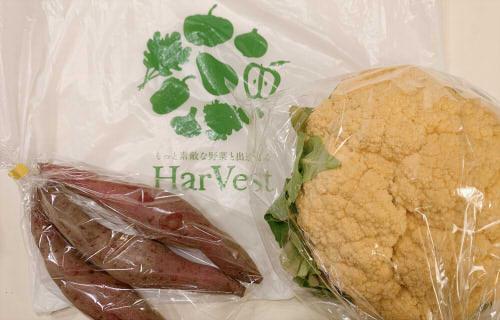 ハーベストHarVest 富山市中心市街にある八百屋さんの移動販売車で野菜を買ってみた!